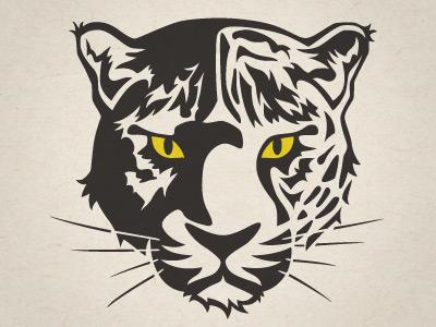 Camperdown Academy Jaguars logo jaguar cat animal illustration yellow mascot