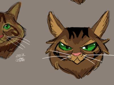 Kili the Cat