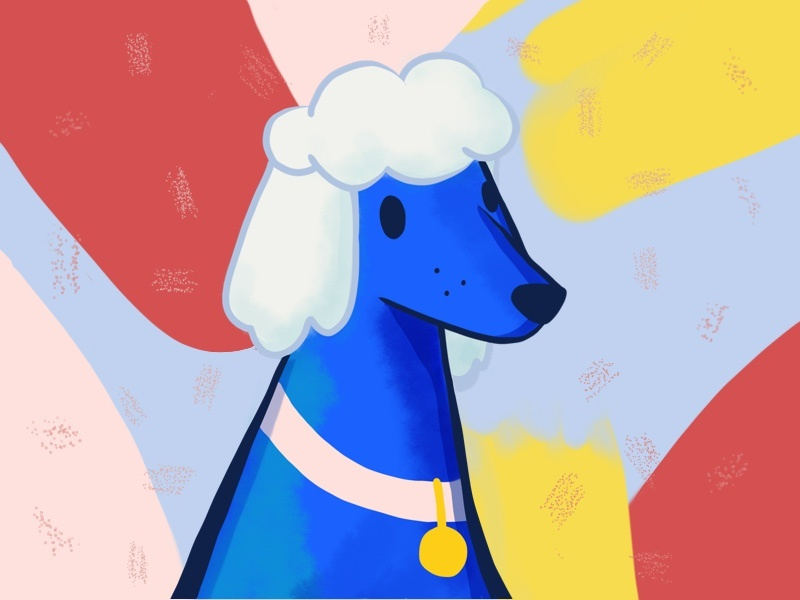 Poodle Illustration dog art procreate dog poodle illustration