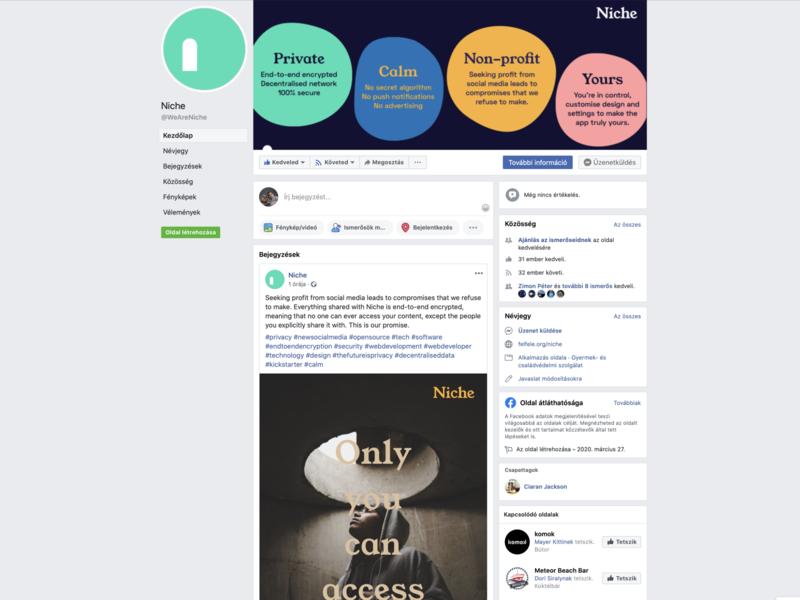Niche Visual Identity – Social channels digital strategy brand design brand niche goeast! design