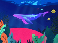 Big fish sea bream