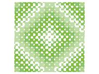 Pattern Color Study