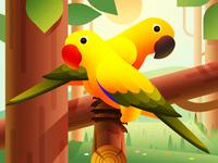 Parrot Illustration Design
