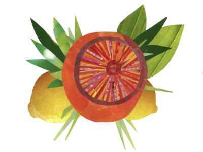 Grapefruit Collage hand done illustration collage