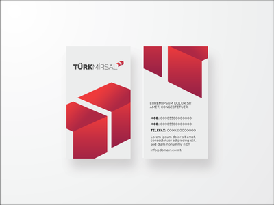 Turk Mirsal Bc business card identity delivering logo turkish delivery shipping turkey
