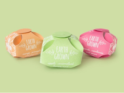 Earth Grown Packaging package design sustainable earth food health snack packaging freelance symbol illustration design graphic design