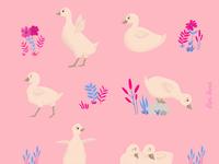 Adorable goslings