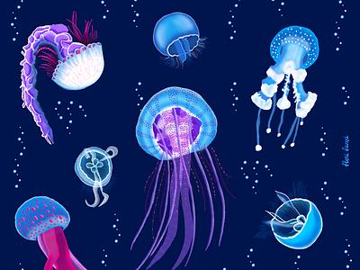 Jellyfish for Julyfish procreate ipad pro vibrant colors illustration lit blue under the sea glow bright colors jellyfish