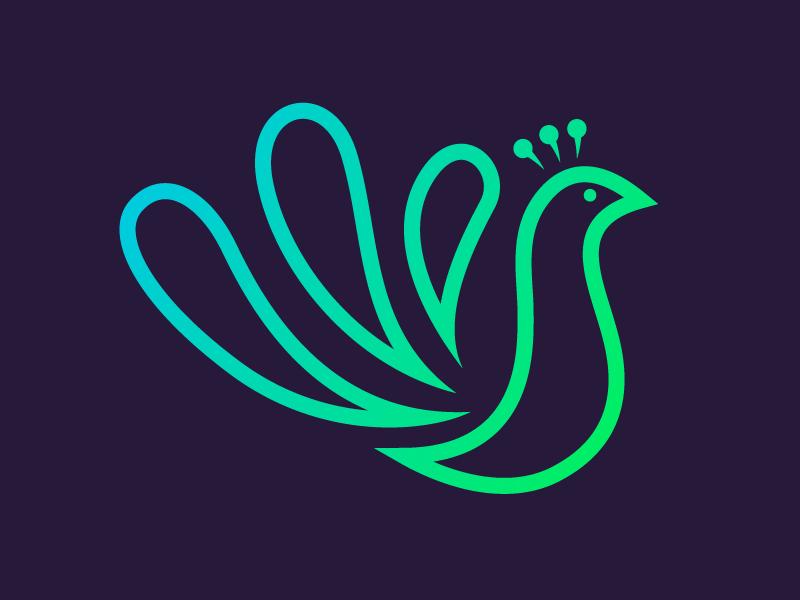 Peacock peacock branding graphic desgin logo