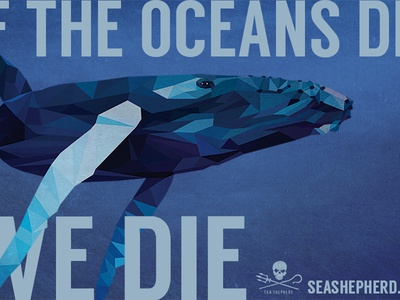 Sea Shepherd vector whale shapes texture blue ocean conservation