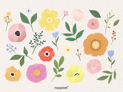 Colorful Flowers Vector Set foliage leaves flower beautiful cute graphic design illustration vector