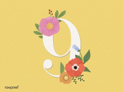 Colorful Flowers Vector Set bloom typography botanical flower beautiful cute graphic design illustration vector