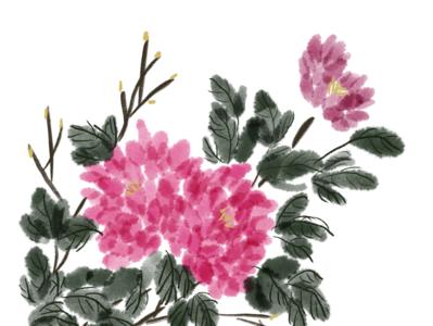 Peony in Digital Ink-painting procreate 100daysofillustration 100dayschallenge illustration