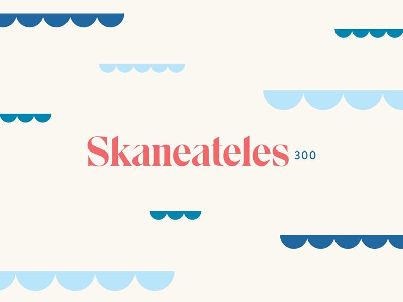 Skaneateles300 branding water lake waves logo skaneateles branding