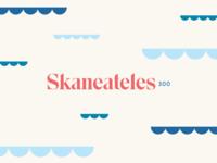 Skaneateles300 branding