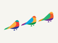Bird study 2