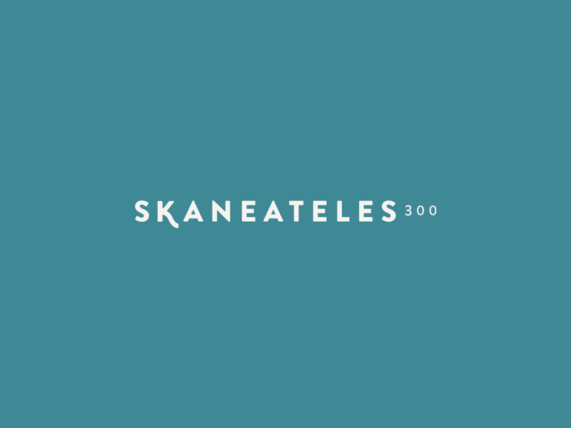 Skaneateles300 re-brand upstateny identity womenswear boutiquebranding logo