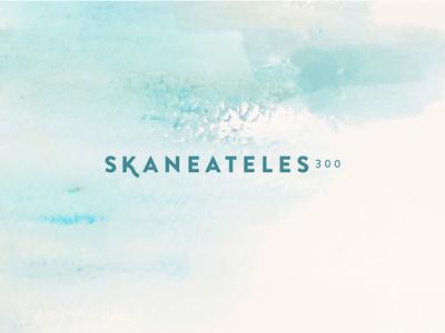 Skaneateles300 rebrand