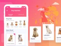 Dog Care App