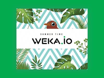 Weka Marketing Products cartoon bird digital graphics tshirt shirt print notebook pen stickers box chocolate towel mondeostudio mondeo design branding marketing products weka