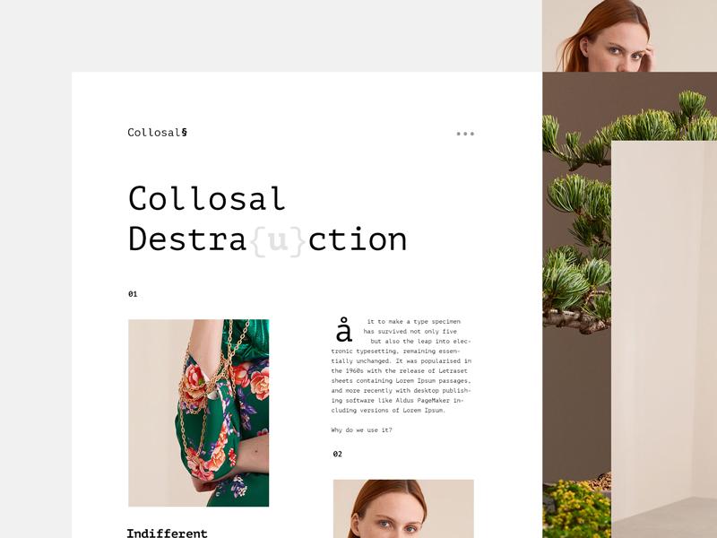Collosal Destraction. ux ui gradient flat design fashion minimalistic web