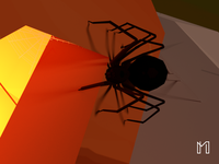 The Spider in Jack-o'-lantern | Halloween