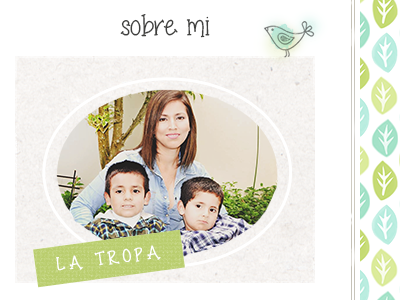 Sidebar about blog about wordpress design hand drawn green vintage fun peru