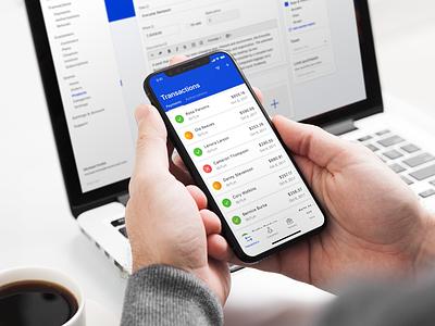 Merchant Platform Exploration payments ecommerce ux ui mobile web