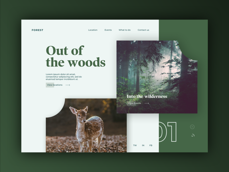 Forest Holiday concept discover discovery user experience photo ux animals daily prompt design landing concept ui
