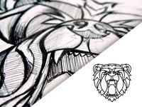 Oso sketch