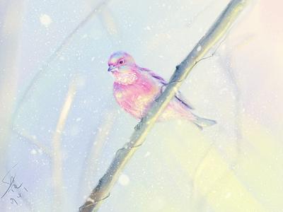 The lucky bird