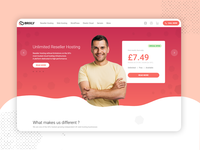 Landing Page Design for Hosting Platform Re-sellers