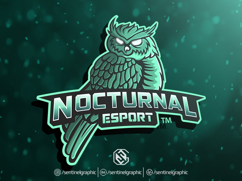 Image of: Freelancer Nocturnal Esport Logo Owl Mascot Logo Sport Dribbble Nocturnal Esport Logo Owl Mascot Logo Sport By Teng Studio