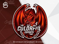 Colorful Logo Esport Mascot Team Sport Game