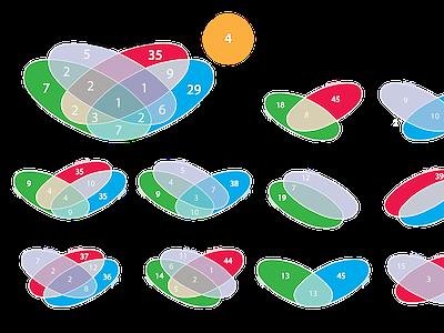Overlapping Venn Diagram venn diagram user research