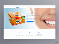Epic Dental Website