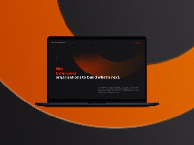 Bunnyshell Visual Identity visual identity ux ui bunnyshell graphic design design dusandidesign webdesign website concept brand identity branding brand designer