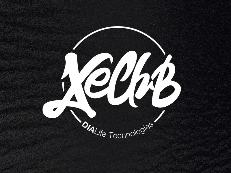 XeClub branding design logo lettering