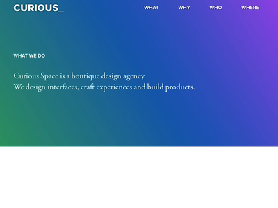 Curious Space - What web development front end dev webflow interaction design web design typography design