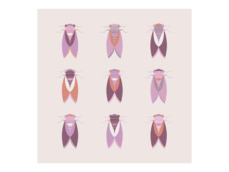 Cicadas purple set cicada animal flying minimal geometric vector bug beetle illustration flat insect