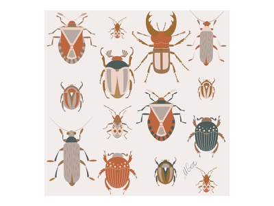 Beetles collection artwork stag beetle minimal geometric design vector flat illustration natural earth nature brown collection bug insect beetle