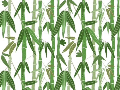 Bamboo green pattern asian asia jungle forest floral plant stems vines green bamboo seamless surfacedesign pattren design illustration
