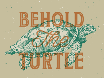 Behold The Turtle!