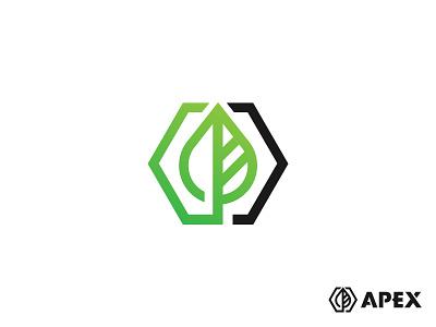 Apex Logo Concept branding mark gradients illustration logo