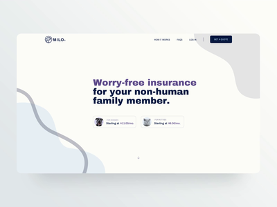 Pet Insurance Hero ui cat animation dog web app insurance pet