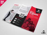 Business Tri-fold Brochure Template Design PSD