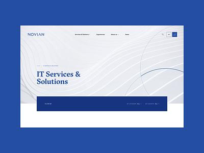 Novian   Website website software digital modern solutions scheme corporate company infrastructure technology blue it
