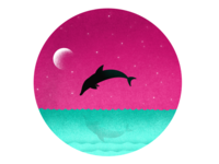 Dolphin in Paradise