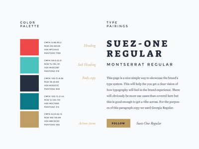 brand identity style guide example