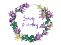 Wreath Of Spring Flowers 6 800